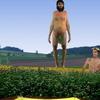 Nude Trampoline